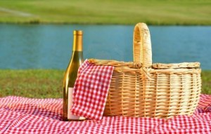 9631361-picnic-basket-and-bottle-of-white-wine-on-red-gingham-blanket-beside-lake